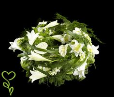 Liljor, germini, rosor, anastasia, hortensia