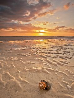 Sunset over the Gulf of Mexico - Fort Myers Beach, Florida| Flickr - Photo Sharing!