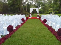 200 pax wedding.  Flowers  clusters of deep redroses only .aPril 2014, Theme park