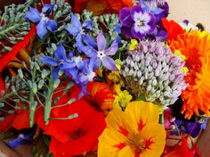 Algunas flores son muy comunes en nuestra dieta, simplemente que no nos damos cuenta, por ejemplo la alcachofa, el coliflor, el brócoli y las alcaparras, dentro de las especias el clavo de olor y el azafrán, no tan usual en nuestra cocina pero sí en otras las flores de calabaza o zuchini, en dulces las rosas y el sauco. O otras a las que tenemos fácil acceso pero que no sabemos que hacer con ellas, como la caléndula, la manzanilla, las flores de albahaca o la flor de jamaica.