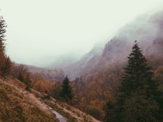 November 4, 2014, 9:39 AM | Pierre Vignaux | VSCO Grid