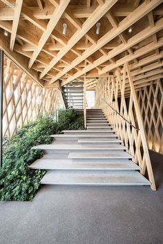 From A Simpler Time: SunnyHills by Kengo Kuma | Stairs up to the main shopping level combine basalt and cork. #design #interiordesign #interiordesignmagazine #architecture #staircase #wood