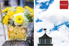 yellow wedding color scheme, lemons, centerpieces, aisle decorations, Leola Village Wedding Photographer: Amanda & Randy » Rhinehart Photography