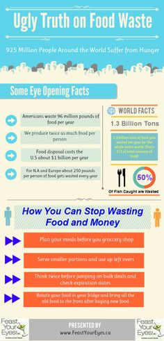 Ugly Truth on Food Waste  Food Waste infographic. (Reduce Food Waste)
