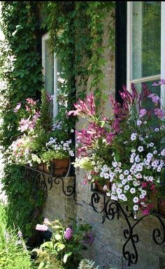 Amazing ideas for french country garden decor 07 Beautiful Gardens, Beautiful Flowers, White Flowers, Garden Windows, Balcony Garden, My Secret Garden, Flower Boxes, Dream Garden, Garden Inspiration