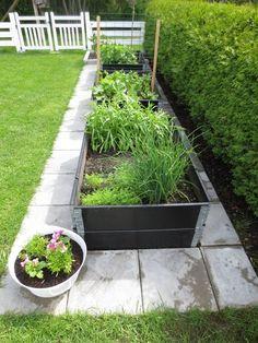 Pros and Cons of Raised Garden Beds – Style Gardening Backyard Vegetable Gardens, Veg Garden, Backyard Garden Design, Vegetable Garden Design, Garden Beds, Backyard Landscaping, Outdoor Gardens, Balcony Gardening, Scandinavian Garden