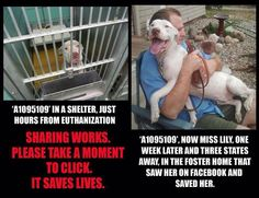 Sharing DOES help save lives. ...