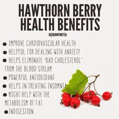 Benefits of hawthorn berry supplements