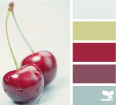 duck egg red colour scheme - Google Search
