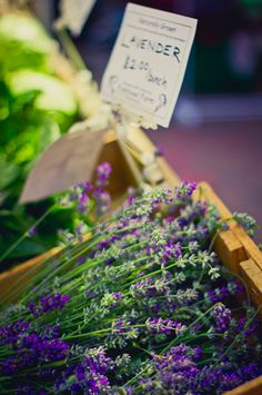mynameproductions:    Photo from a 2011 Farmers Market