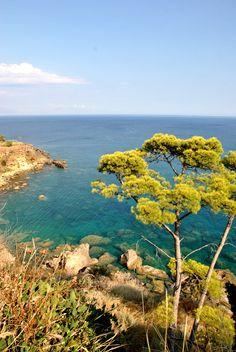 Koroni, Greece Greek Islands, Oceans, Santorini, Beaches, Travelling, Places To Visit, Wildlife, To Go, Outdoors