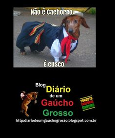 Diário de um Gaúcho Grosso: CUSCO