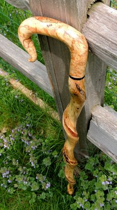 Vine Twisted Spalted Maple - Rick Colvin Canemaker - uncommoncanes.com - (from the Mark Dwyer Collection) Walking Sticks And Canes, Walking Canes, Walking Staff, Dog Walking, Custom Canes, Cane Handles, Cane Stick, Wooden Canes, Popular Hobbies