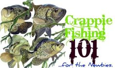 Crappie.com - As Promised ~ Here's Crappie Fishing 101 ~ For Newbies.