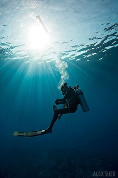 Learn how to save yourself if a dive turns ugly with these self rescue techniques, and practice, practice, practice. Sea Diving, Best Scuba Diving, Scuba Diving Gear, Cave Diving, Scuba Diving Pictures, Le Grand Bleu, Diving Quotes, Scuba Diving Equipment, Underwater Photography