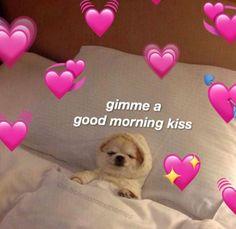 Today's Afternoon Mega Memes Memes Amor, Memes Estúpidos, All Meme, Stupid Memes, Good Morning Kisses, Good Morning Love Meme, Good Morning Cutie, Memes Lindos, Wholesome Pictures