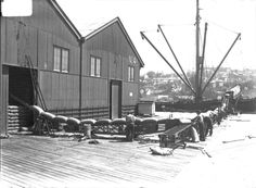 Grain being moved along conveyor belts on No 4 Wharf,Darling Harbour, Sydney in 1931.