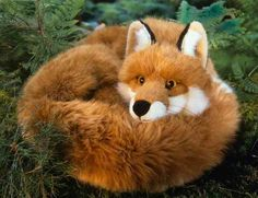 This is a beautiful realistic 55cm female Fox, she is handmade in Germany by the soft toy maker Kosen. She is made of luxury soft and fluffy auburn plush and is superbly poseable due to her being filled with granules which give ger a lovely weight and feel. This Kosen product conforms to European Safety Standard EN71 and carries the CE mark.  She can be hand washed.