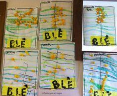 Du blé ... La petite poule rousse Petite Section, Activities, Grade 2, Pain, Albums, Children, Ears Of Corn, Farm Animals, Hens