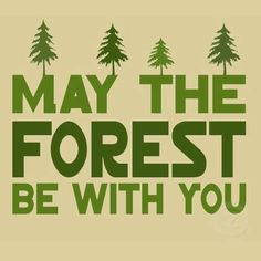 May the forest be with you always. Now and forever let the forests of the Earth speak to your soul wherever you go. Never litter, and if you see litter: pick it up and recycle it. A clean Earth is a Healthy Earth.