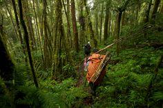 Foto: timlaman.com