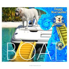 Paws Aboard Dog Step Ramp Ladder DOG'S LOVE IT! Attaches to Boat, Pool, Deck & Dock Makes Boating Safe & Fun for You and Your Dog $199.95 Dog Pool Ramp, Pool Ladder, Pet Resort, Dog Steps, All About Animals, Dog Love, Deck, Dog Things, Boat Dock
