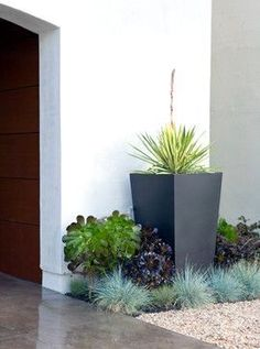 Easy Desert Landscaping Tips That Will Help You Design A Beautiful Yard Front Yard Planters, Backyard Planters, Small Backyard Landscaping, Modern Landscaping, Landscaping Ideas, Backyard Patio, Modern Landscape Design, Garden Landscape Design, Desert Landscape