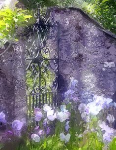 Wrought iron gate in a stone wall with Iris surround...