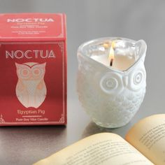 Noctua Owl Candle - Various Scents Available - Candles & Scents - Home Decoration - Home Accessories