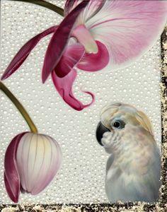 Melanie Foster  phelanopsis and cockatoo 1.jpg
