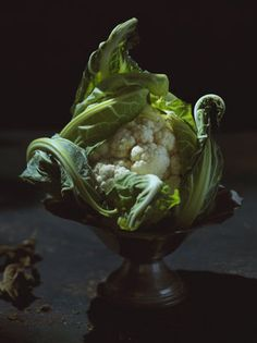 The under appreciated cauliflower.always in the background playing a supporting role. Rejoice in its splendour! This beauty is brought to you by the whisperer of so many gorgeous things. Editorial Photography, Food Photography, Toronto Photographers, Taste Made, Food L, From Where I Stand, Still Life, Cauliflower, Nom Nom