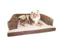 Hidden Valley Baxter Couch Bolster Dog Bed