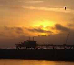 Santa Monica Pier Park Photography, Santa Monica, Celestial, Sunset, Outdoor, Beauty, Outdoors, Sunsets, Outdoor Games