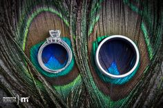 Ring shot with Peacock Feathers
