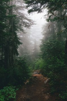 I want to get lost here