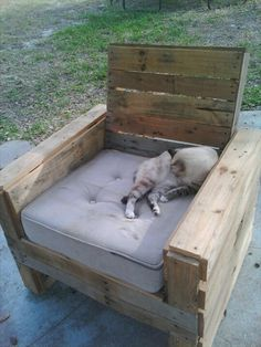 21 Ideas for Awesome Pallet Chair plus the cat sells it!