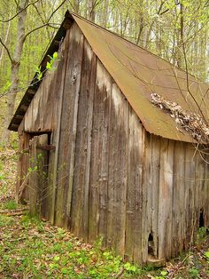 Rustic Shed by Shutterfool, via Flickr