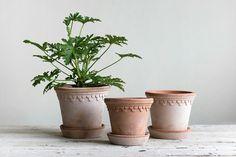 Kruka Bergs potter Köpenhamn 1st Apartment, Garden Pots, Birthday Wishes, Planting Flowers, Planter Pots, Ceramics, House Styles, Interior, Inspiration