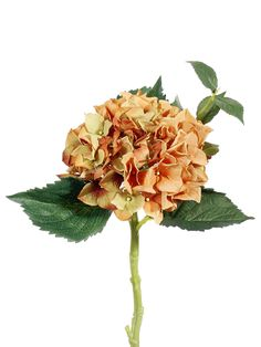 "Hydrangea Spray in Dusty Orange and Light Green 15"" Tall Only $6.29 fall wedding flowers silk flowers bridal bouquet DIY budget bride http://www.afloral.com/Silk-Wedding-Flowers/Fall-Wedding-Flowers/Hydrangea-Spray-in-Dusty-Orange-and-Light-Green-15-Tall"