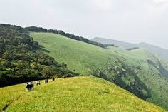 Kudremukh Trek in Chikmagalur >>>  Kudremukh mountain range located in Chikmagalur around 285km from Bangalore the Kudremukh Peak is also known as the 'Horse-faced Peak' due to its resemblance with a horse's face.  #treks #trekking #KudremukhTrek #Chikmagalur