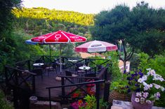 Lucha Snack bar in Gyri village, is 550 meters above sea level. In its inhabitants counted 58 people, one more than in Zakynthos island, Ionian sea, Greece Snack Bar, Outdoor Furniture Sets, Outdoor Decor, Greece, Patio, Sea Level, Island, Landscapes, People