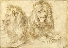 Albrecht Dürer, Two seated lions (1521) on ArtStack #albrecht-durer #art