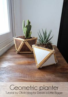 diy plywood geometric planter >>>> Today I propose you a very versatile tutorial. I will show you how to make plywood containers, you can use . Wooden Planters, Decorating Tips, Diy Furniture, Diy Home Decor, Diy And Crafts, Projects To Try, Crafty, Creative, Utility Knife