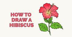 Learn to draw a beautiful hibiscus flower. This step-by-step tutorial makes it easy. Kids and beginners alike can now draw a great looking hibiscus.