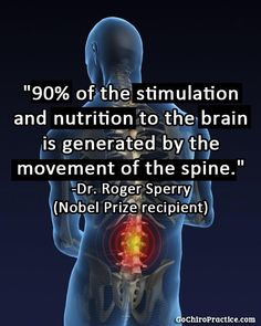 The Movement Clinic 9601 W87th St Overland Park KS 66212  Functional Chiropractic. Functional Life.