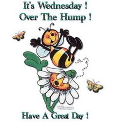 It's Wednesday! Over The Hump! Have A Great Day wednesday happy wednesday wednesday image quotes wednesday quotes and sayings Wednesday Hump Day, Wednesday Greetings, Happy Wednesday Quotes, Good Morning Wednesday, Wednesday Humor, Funny Good Morning Quotes, Morning Greetings Quotes, Friday Humor, Happy Friday