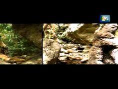 Chavela Vargas - La Luna Grande Concierto (Completo) - YouTube