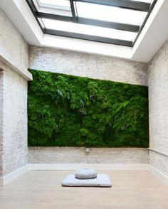 plant wall goals