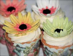 Gerberra Daisy Cupcakes   SUGAR JEWELS CAKES & CONFECTIONS