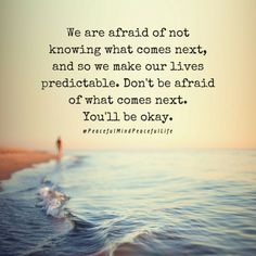 We are afraid of not knowing what comes next, and so we make our lives predictable. Don't be afraid of what comes next. You'll be ok. Now Quotes, True Quotes, Words Quotes, Wise Words, Quotes To Live By, Sayings, Quotable Quotes, Afraid To Love Quotes, Afraid Of Love